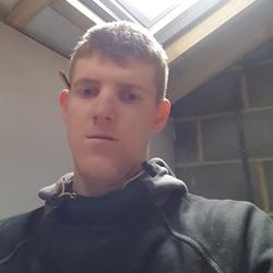 Lewis (29)
